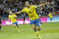 Swedish soccer playerZlatan Ibrahimovic