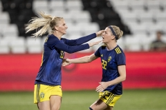 The Swedish football team wins over Austria in Vienna